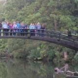 Bridge Party