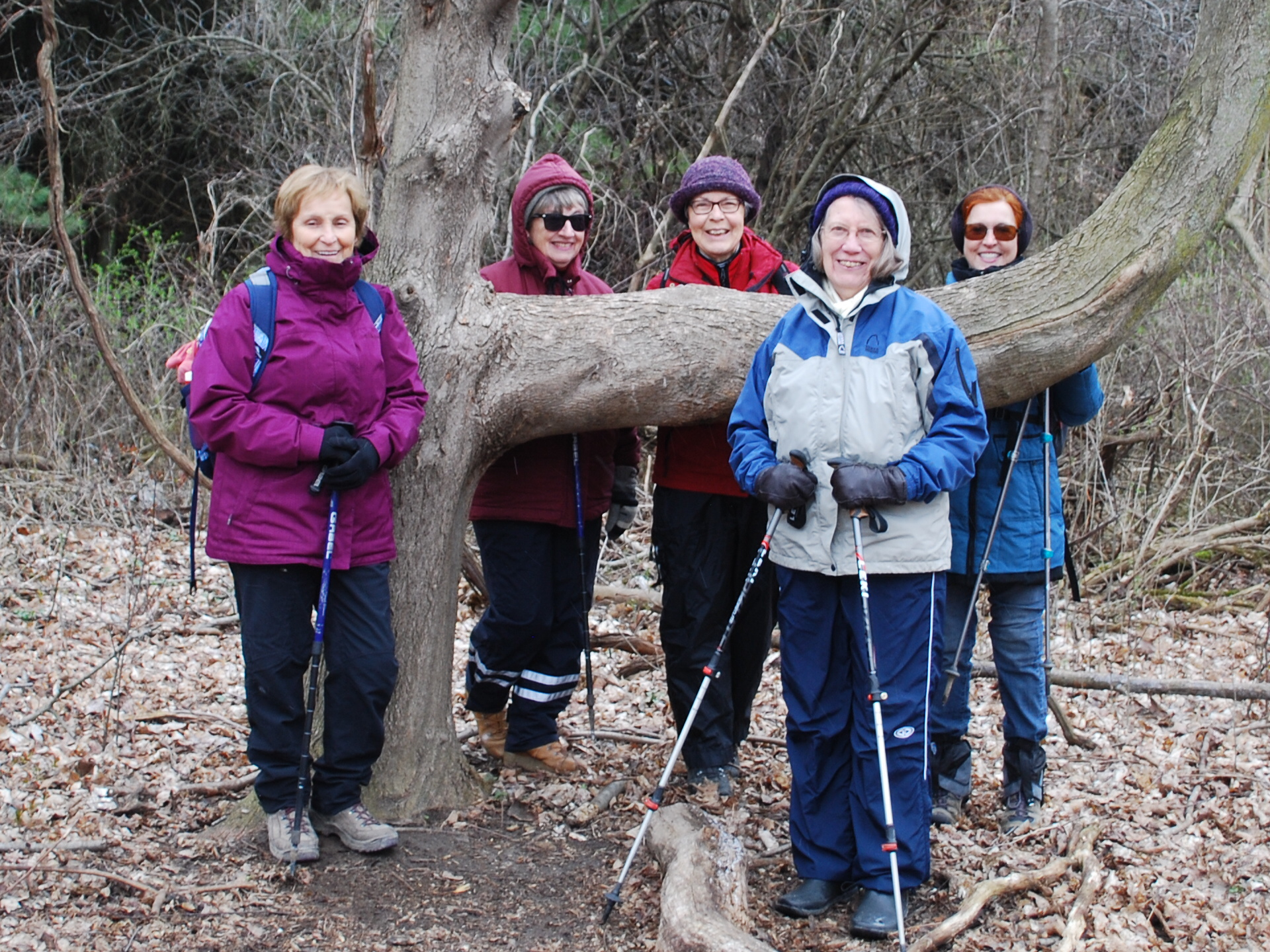 Bonnie leads Chesney Woods Hike, near Innerkip, Oxford County