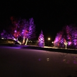 Patterson-Lake-lights