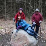Chesney Woods Hike near Innerkip, Oxford County